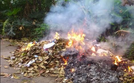 Jangan Bakar Sampah Lagi Ya, Dendanya Bisa Sampai Jutaan