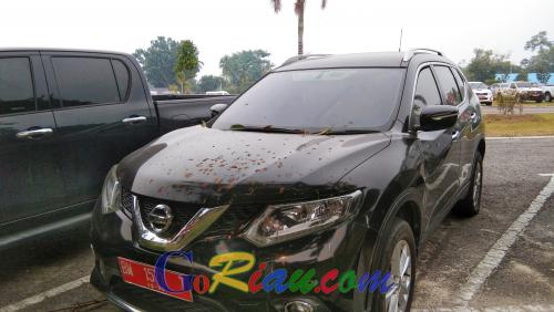 Anda Berminat? 40 Kendaraan Dinas Milik Pemprov Riau Bakal Dilelang Tahun Ini
